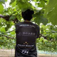 柚木さん ゆのき農園
